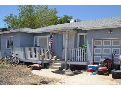 Palmdale Single Family Home For Sale: 38613 16th Street East