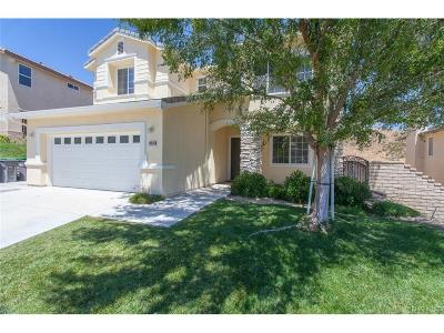 Saugus Single Family Home For Sale: 28636 High Ridge Drive