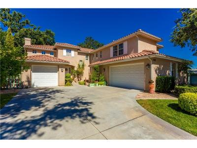 Newhall Single Family Home For Sale: 24629 Apple Street
