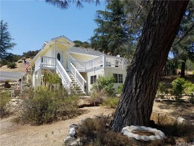 Lake Hughes Single Family Home For Sale: 17869 Elizabeth Lake Road