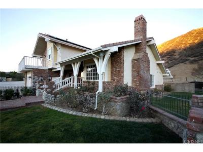 Saugus Single Family Home For Sale: 29500 San Francisquito Canyon Road