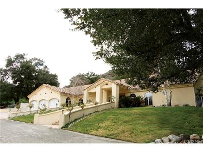 Canyon Country Single Family Home For Sale: 27505 Trail Ridge Road