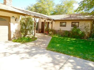 Palmdale Single Family Home For Sale: 643 West Barrel Springs Road