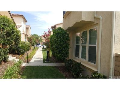 Castaic Single Family Home For Sale: 31759 Paseo Feliz