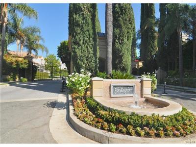 Calabasas Single Family Home For Sale: 23125 Park Marco Polo