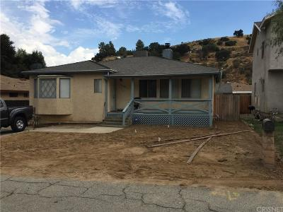 Castaic Single Family Home For Sale: 30106 Hunstock Street
