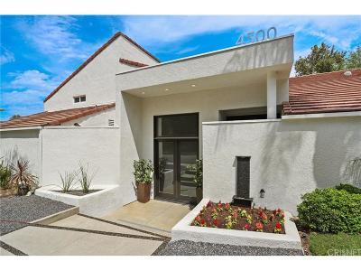 Calabasas CA Single Family Home For Sale: $1,675,000