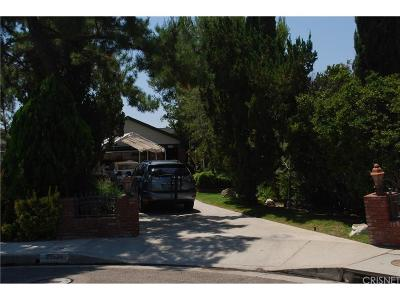 Saugus Single Family Home For Sale: 21534 Alaminos Drive