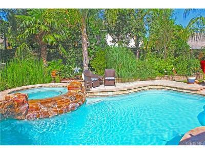 Valencia Single Family Home For Sale: 25801 Espinoza Drive