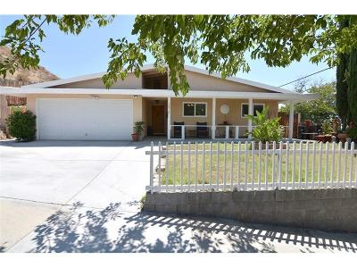 Canyon Country Single Family Home For Sale: 18502 Fairweather Street
