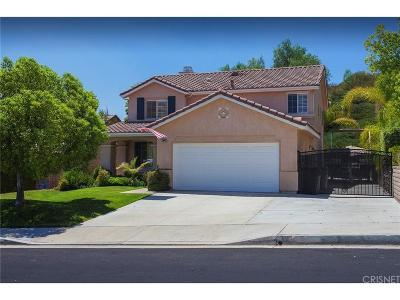 Saugus Single Family Home For Sale: 28945 Raintree Lane