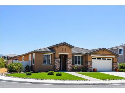 Palmdale Single Family Home For Sale: 5822 Kiblurn High Road
