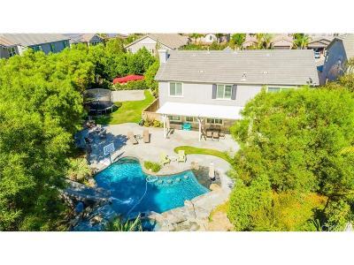 Valencia Single Family Home For Sale: 29339 Las Terreno Lane