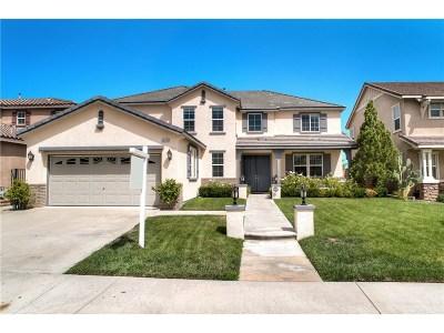 Valencia Single Family Home For Sale: 29316 Las Brisas Road