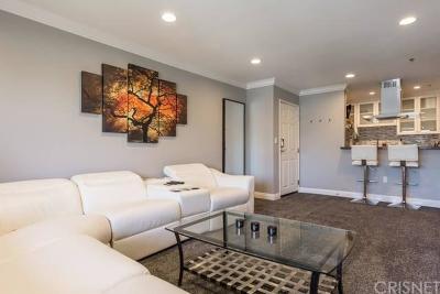 Sherman Oaks Rental For Rent: 4501 Cedros Avenue #212