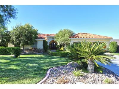 Palmdale Single Family Home For Sale: 6319 Bella Kath Terrace