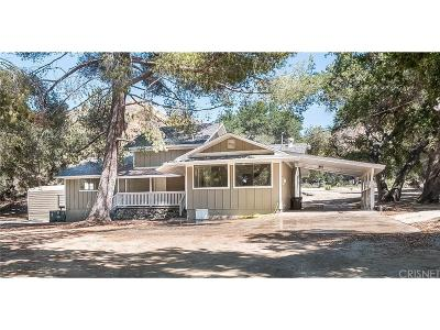 Canyon Country Single Family Home For Sale: 15269 Iron Canyon Road