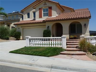Castaic Single Family Home For Sale: 30118 Galbreth Court