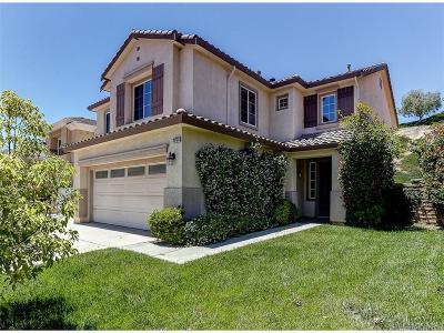 Saugus Single Family Home For Sale: 28733 Garnet Canyon Drive