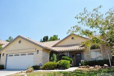 Palmdale Single Family Home For Sale: 2446 Desert Oak Drive