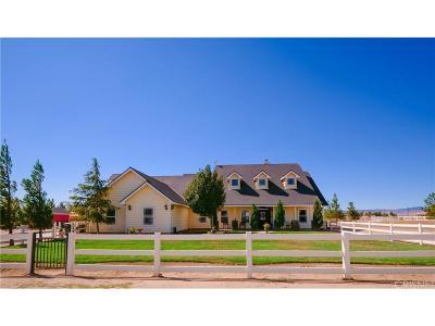 Lancaster Single Family Home For Sale: 8740 West Avenue C10