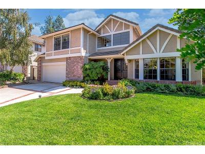 Calabasas Single Family Home For Sale: 22242 Drums Court