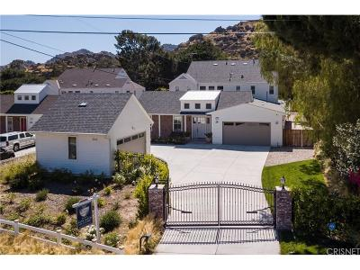 Chatsworth Single Family Home For Sale: 10883 Bee Canyon