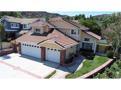 Castaic Single Family Home For Sale: 31229 Quail Valley Road
