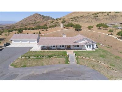 Acton Single Family Home For Sale: 6747 Valley Sage Road