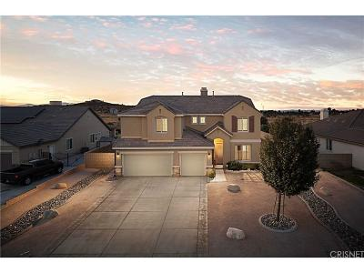 Lancaster Single Family Home For Sale: 3625 Paddock Way