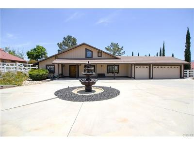Acton Single Family Home For Sale: 33020 Old Miner Road