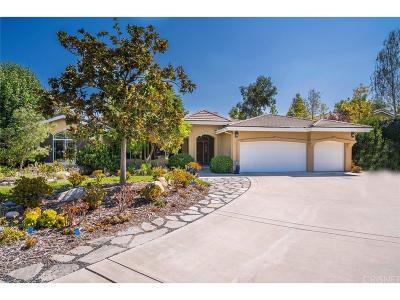 Thousand Oaks Single Family Home For Sale: 766 Parmenter Avenue