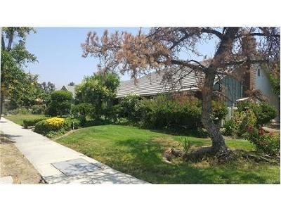 Chatsworth Single Family Home For Sale: 10810 Owensmouth Avenue