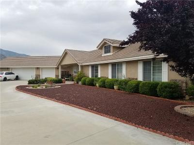 Acton Single Family Home For Sale: 30891 Aliso Canyon Road
