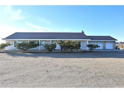 Rosamond Single Family Home For Sale: 7773 Elder Avenue