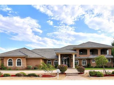 Lancaster Single Family Home For Sale: 3238 Camino Del Sur