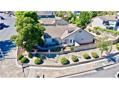 Castaic Single Family Home For Sale: 31249 Quail Valley Road