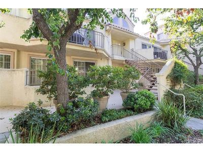 Valencia Condo/Townhouse For Sale: 24103 Del Monte Drive #431