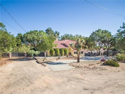 Palmdale Single Family Home For Sale: 3647 East Avenue T8