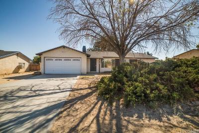 Palmdale Single Family Home For Sale: 40130 173rd Street East