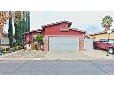 Castaic Single Family Home For Sale: 31919 Cinnabar Lane