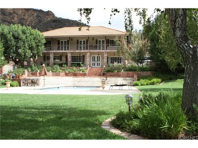 Agoura Hills Single Family Home For Sale: 29661 Mulholland Highway