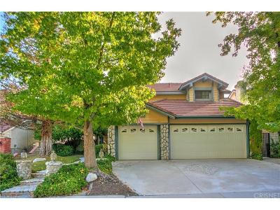 Castaic Single Family Home For Sale: 28779 Greenwood Place