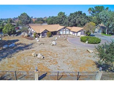 Newhall Single Family Home For Sale: 21925 Placeritos Boulevard