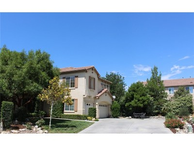 Studio City Single Family Home For Sale: 3733 Wrightwood Drive
