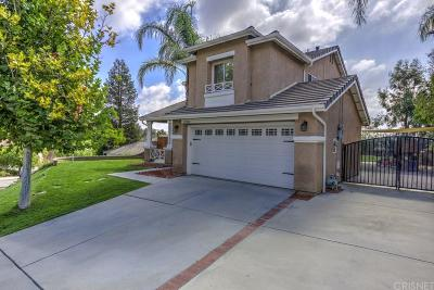 Castaic Single Family Home For Sale: 27830 Villa Canyon Road