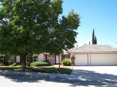 Palmdale Single Family Home For Sale: 41253 Chestnut Street