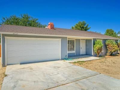 Lancaster Single Family Home For Sale: 40627 176th Street East