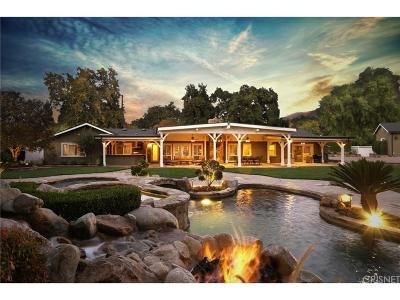 Canyon Country Single Family Home For Sale: 15728 Live Oak Springs Canyon Road
