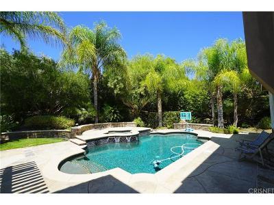 Valencia Single Family Home For Sale: 29329 Hacienda Ranch Court